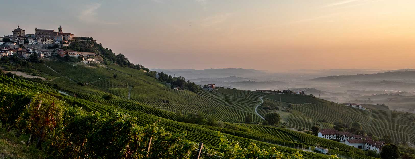 Postcard from Langhe